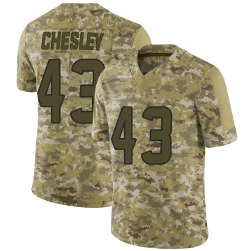 Youth Nike Houston Texans Anthony Chesley Camo 2018 Salute to Service Jersey - Limited