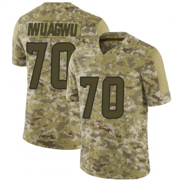 Youth Nike Houston Texans Cordel Iwuagwu Camo 2018 Salute to Service Jersey - Limited