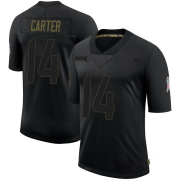 Youth Nike Houston Texans DeAndre Carter Black 2020 Salute To Service Jersey - Limited